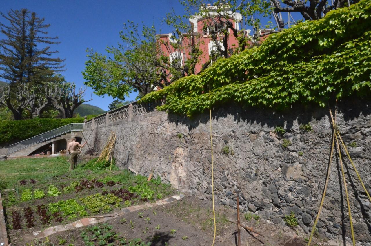 Ecological kitchen garden