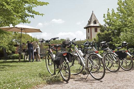 Ciclismo por la via verde - Hotel Can Garay